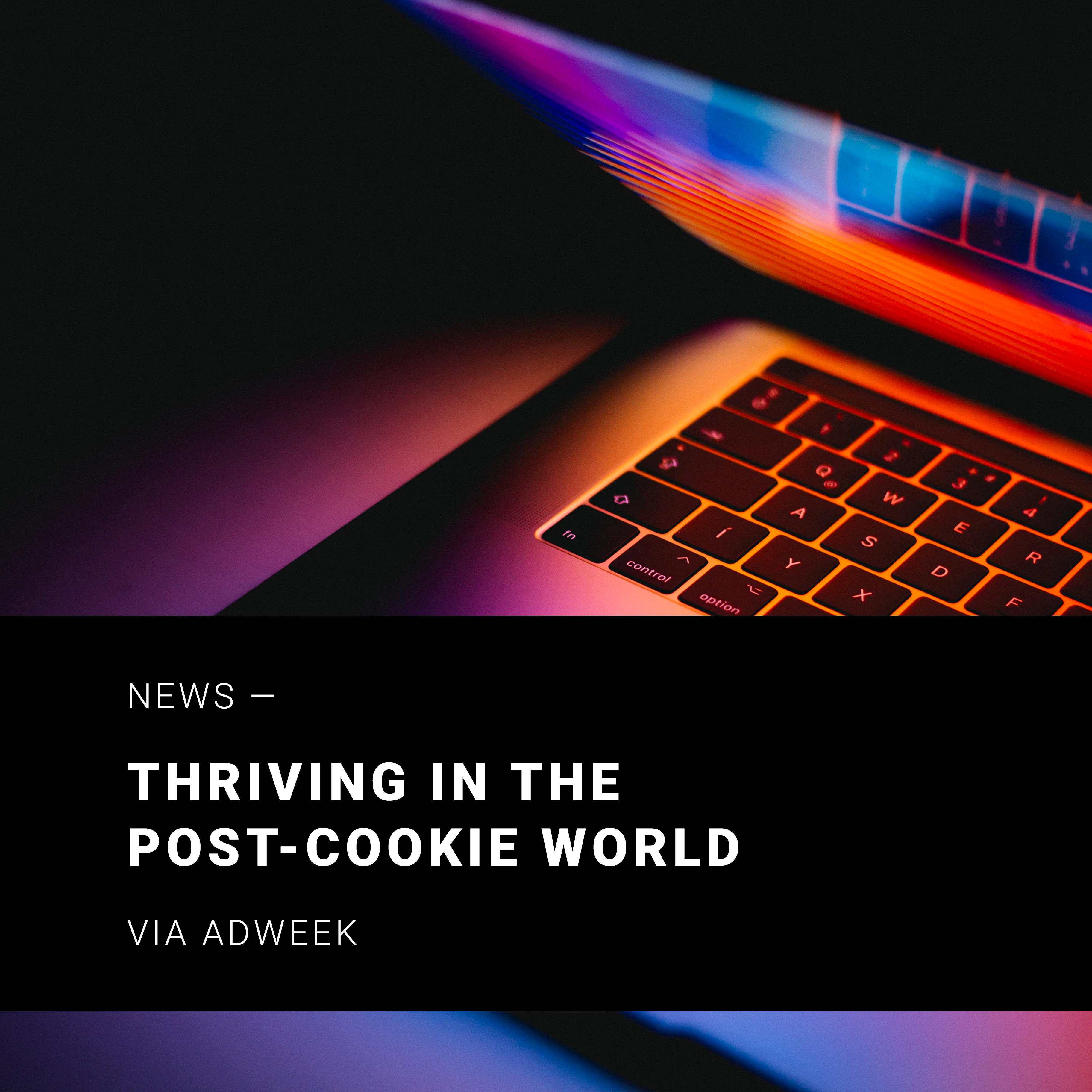 POV-COVERS-Post-Cookie-World-01